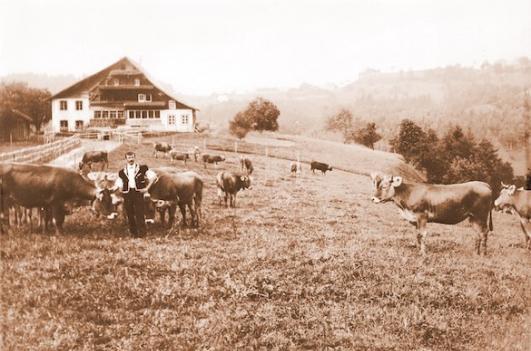 Hof Widenwald