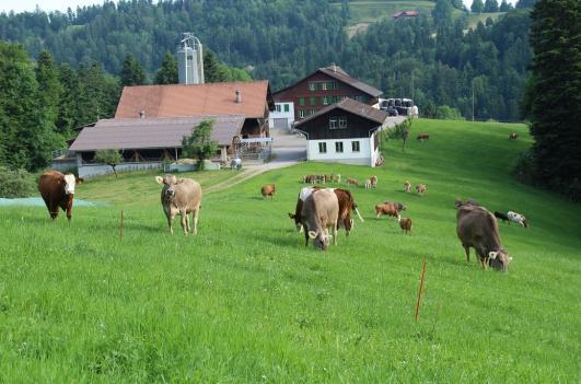 Widenwald Hof